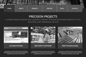 Precision Projects